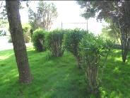 jardimfdaheadquarters